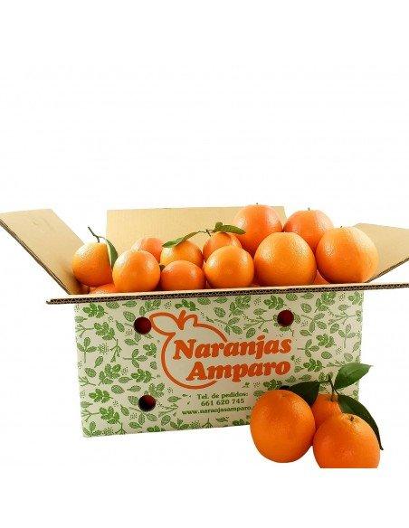 Naranjas Navel de Zumo y Mesa