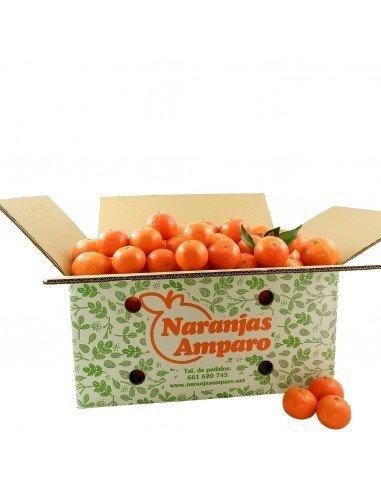 Mandarina Clementina tamaño baby