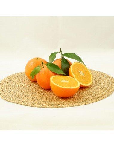 Naranja de mesa variedad Navel