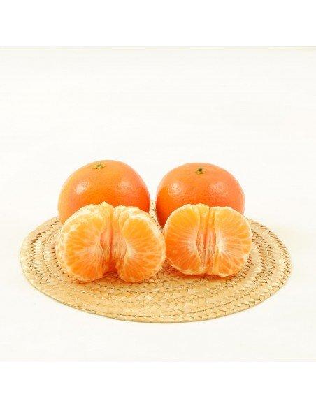 Mandarinas de Mesa online