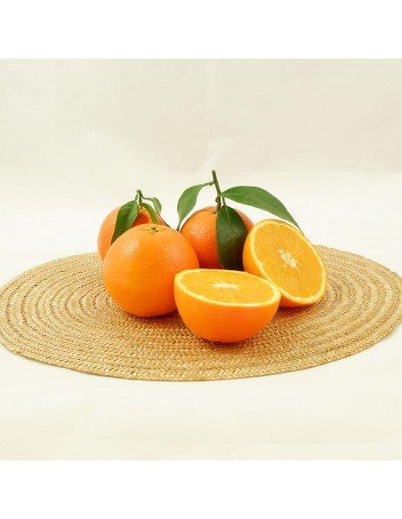 Naranjas valencianas precio barato