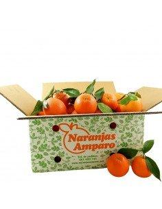 Naranja Navel mesa