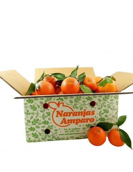 Naranjas de Mesa - Navel