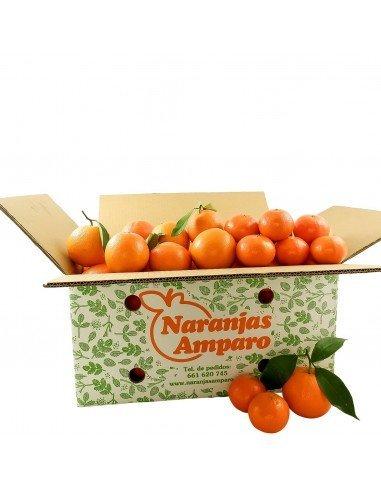 Mixta naranjas navel y mandarina clementina