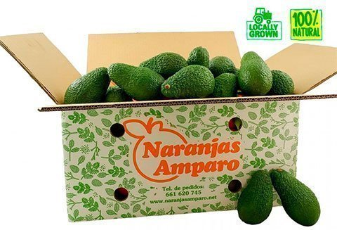 aguacates online
